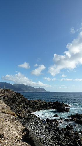 Ka'ena Point State Park, Oahu, bird sanctuary