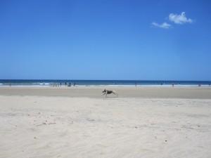 Tamagringo Beach